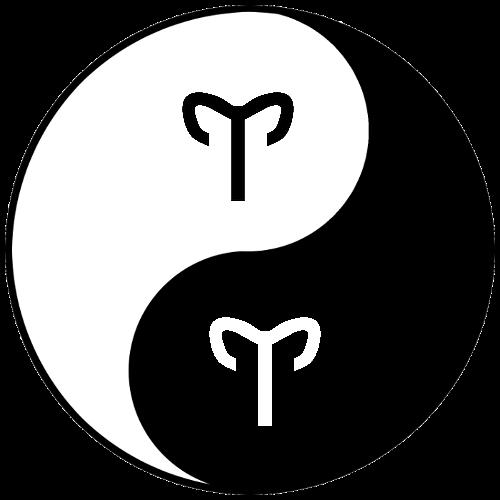 Saulė Avino ženkle Menulis Avino ženkle